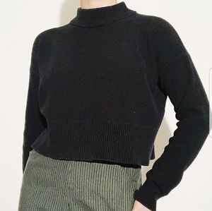 WILFRED Silk & Cashmere Cropped Sweater Size M